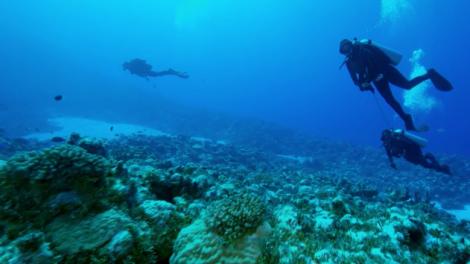 Diving at Bikini Atoll
