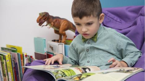 """A young boy is reading a dinosaur book."""