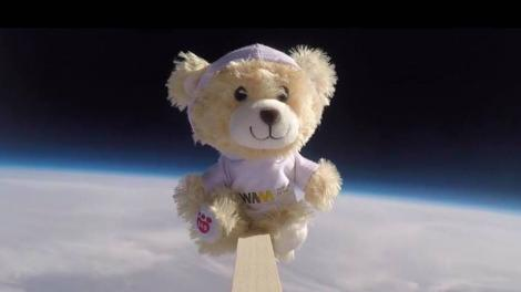 """bear in space"""