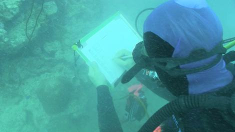 A scientists writing underwater