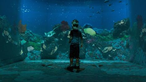 """""""A young boy is standing in a digital VR underwater room."""""""