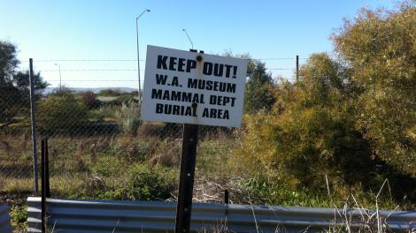 "A sign reads ""Keep out! WA Museum Mammal Dept Burial Area""."