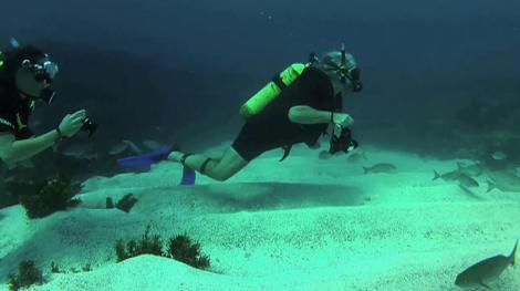 two divers scuba diving underwater with photography equipment
