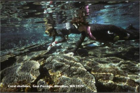 Coral Shallows, Goss Passage, Abrolhos, 1979.