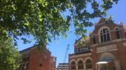 A leafy tree hangs over the photo, two heritage buildings are behind. There is blue sky and a gap between the buildings where a glass foyer used to be