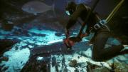Underwater chainsaws were used to make some of the largest pieces more manageable when removed