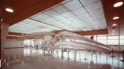 A large whale skeleton sits in an empty room.