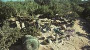 A series of shipwreck artefacts assembled on a beach