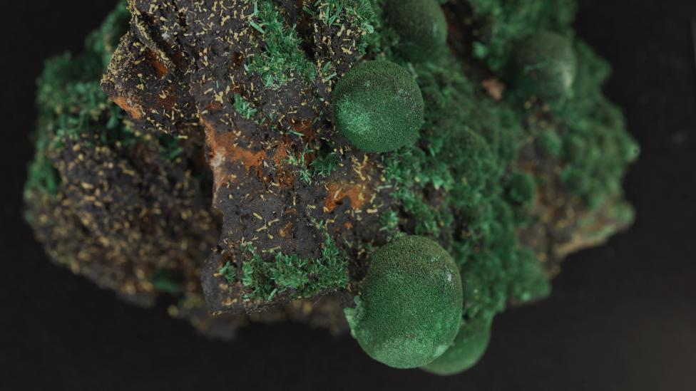 Image of the mineral Malachite with associated pyromorphite.