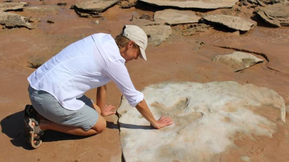 WA Museum curator Jessica Brainard with her palm on the footprint of a therapod