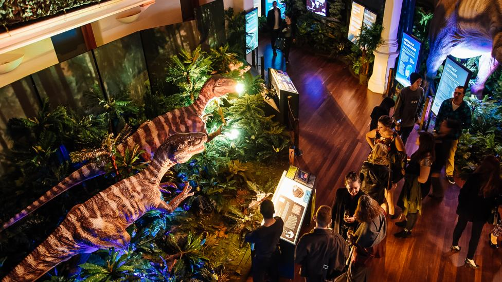 The Dinosaur Discovery exhibition at night with people enjoying visiting the show