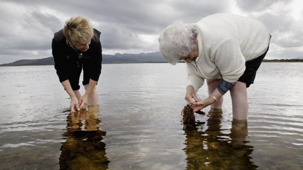 """""""Two women searching for materials in still water."""""""
