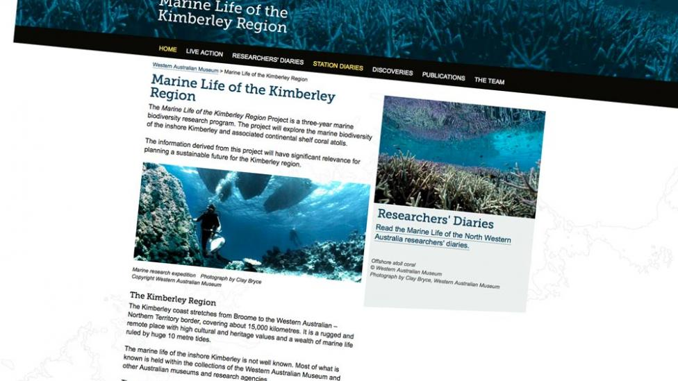 """Screen shot from the """"Marine Life of the Kimberley Region"""" website Developed by the WA Museum"""