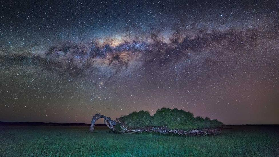 'The Greenough leaning tree' by Geraldton photographer Ken Lawson shows a tree growing sideways under a star-filled night sky.