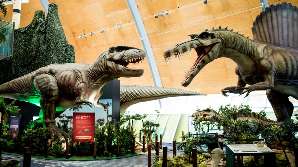 Dinosaur Discovery: Lost Creatures of the Cretaceous exhibition
