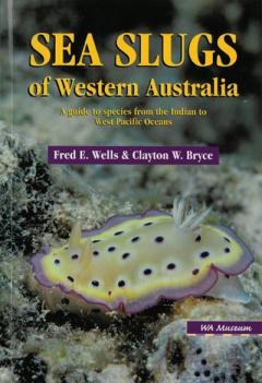 Sea Slugs of WA