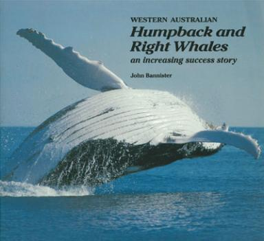 Humpback and Right Whales