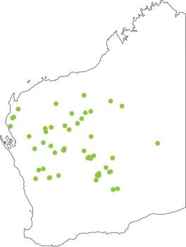 Distribution map for Water-holding Frog