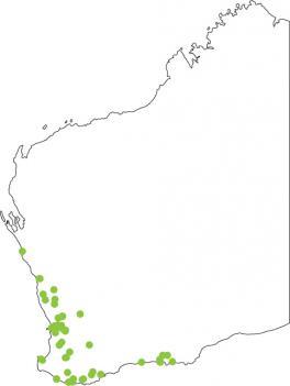 Distribution map for Sand Frog