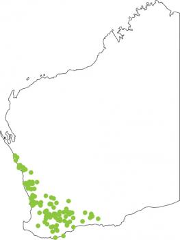 Distribution map for Turtle Frog