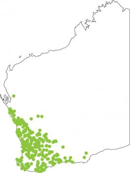 Distribution map for Crawling Toadlet