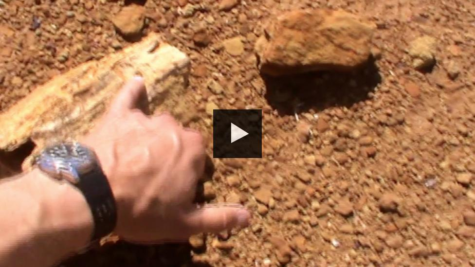 Mikael Siversson hand pointing to a piece of fossilised wood in the Australian outback